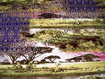 Танзания  (масло хол.)