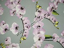 Орхидеи (ниагара)